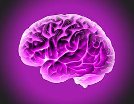 Genius Brain